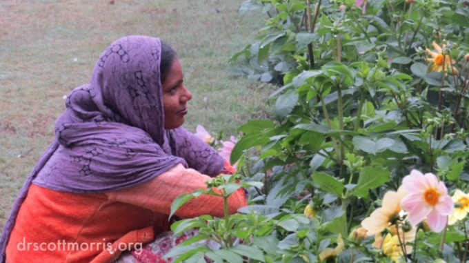 Indian woman looks at flowers in garden